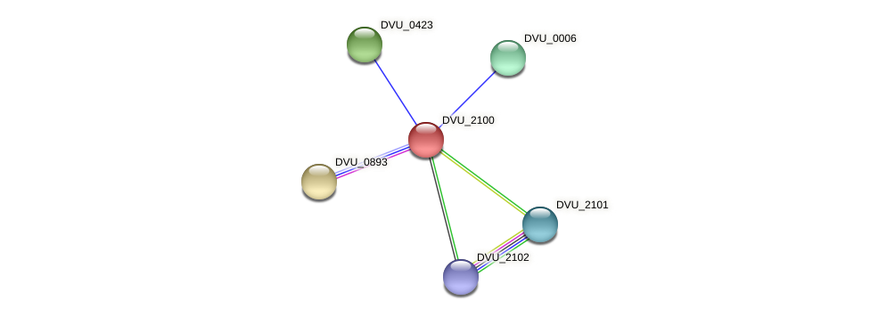 DVU_2100 protein (Desulfovibrio vulgaris Hildenborough) - STRING interaction network