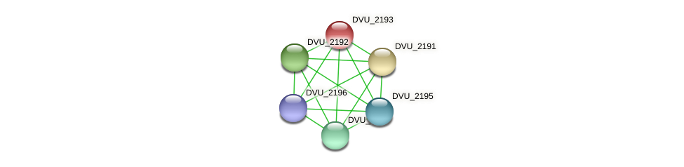 DVU_2193 protein (Desulfovibrio vulgaris Hildenborough) - STRING interaction network