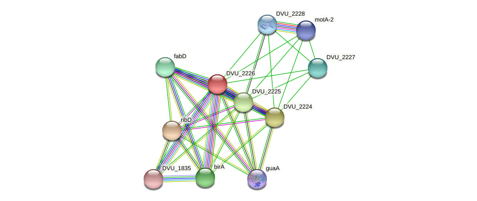 DVU_2226 protein (Desulfovibrio vulgaris Hildenborough) - STRING interaction network