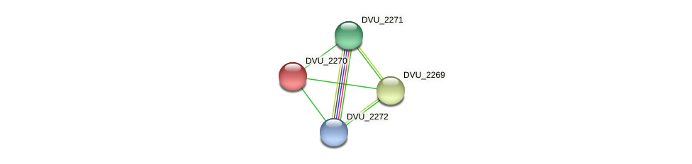 DVU_2270 protein (Desulfovibrio vulgaris Hildenborough) - STRING interaction network