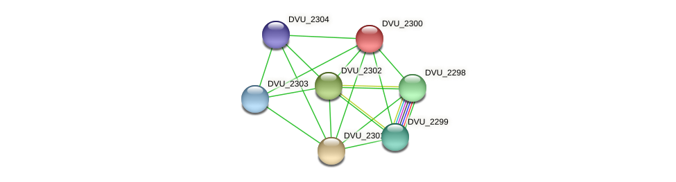 DVU_2300 protein (Desulfovibrio vulgaris Hildenborough) - STRING interaction network