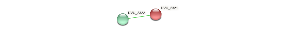 DVU_2321 protein (Desulfovibrio vulgaris Hildenborough) - STRING interaction network