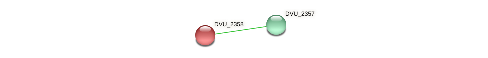 DVU_2358 protein (Desulfovibrio vulgaris Hildenborough) - STRING interaction network