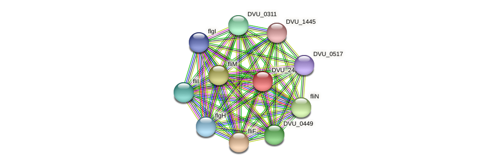 DVU_2414 protein (Desulfovibrio vulgaris Hildenborough) - STRING interaction network