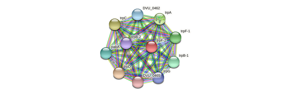 trpF-2 protein (Desulfovibrio vulgaris Hildenborough) - STRING interaction network