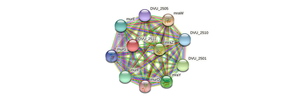 DVU_2511 protein (Desulfovibrio vulgaris Hildenborough) - STRING interaction network