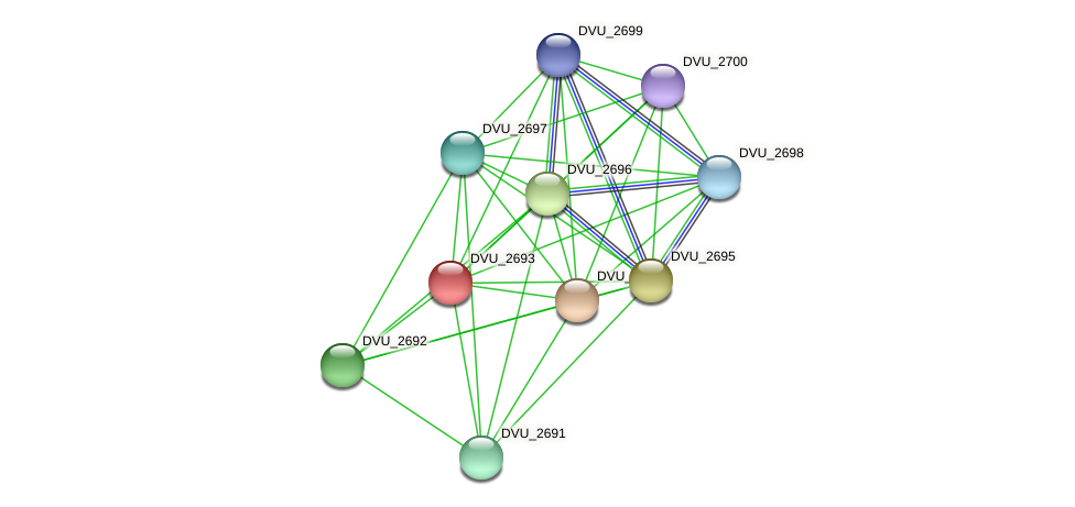 DVU_2693 protein (Desulfovibrio vulgaris Hildenborough) - STRING interaction network