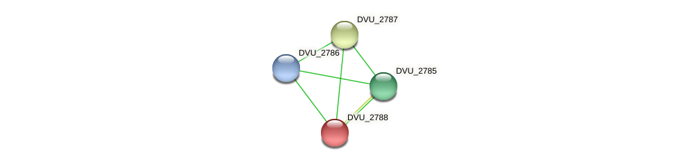 DVU_2788 protein (Desulfovibrio vulgaris Hildenborough) - STRING interaction network