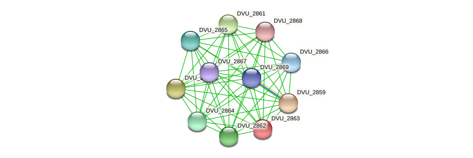 DVU_0206 protein (Desulfovibrio vulgaris Hildenborough) - STRING interaction network