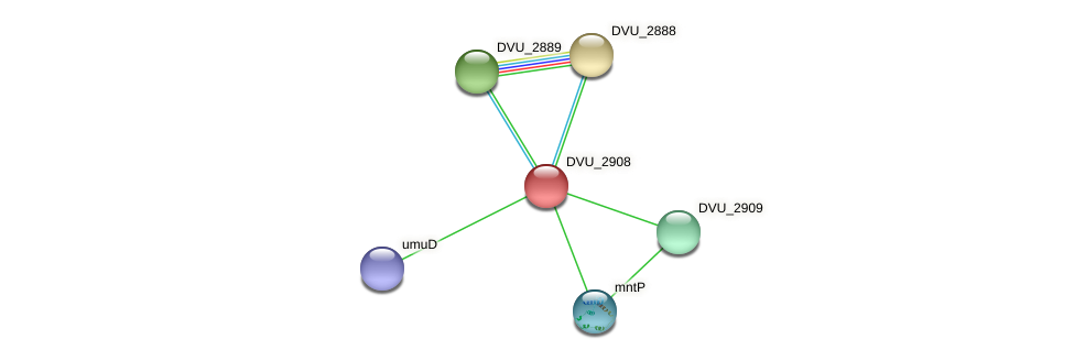 DVU_2908 protein (Desulfovibrio vulgaris Hildenborough) - STRING interaction network