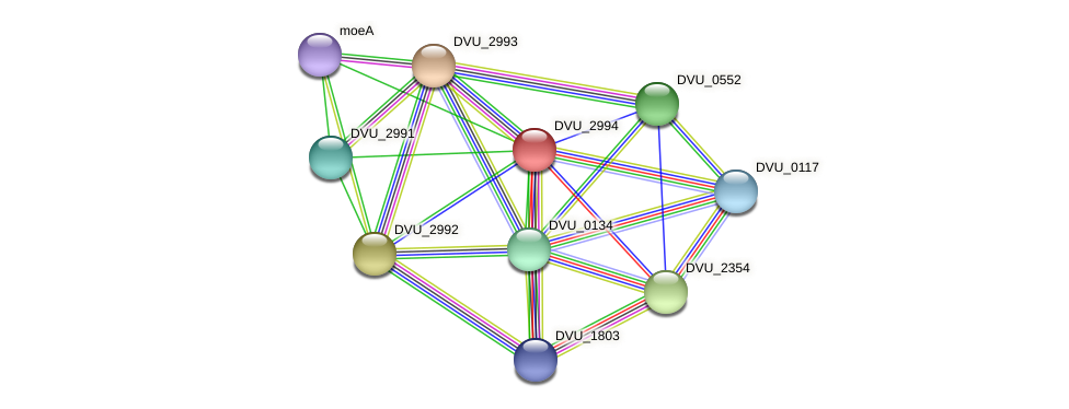 DVU_2994 protein (Desulfovibrio vulgaris Hildenborough) - STRING interaction network