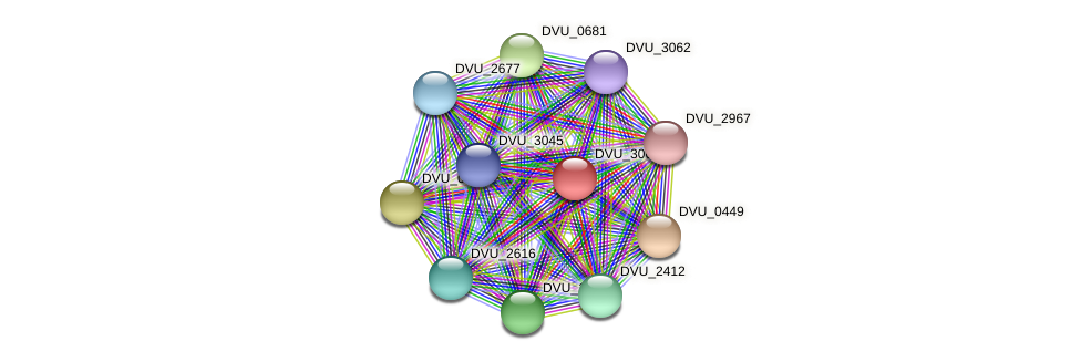 DVU_3068 protein (Desulfovibrio vulgaris Hildenborough) - STRING interaction network