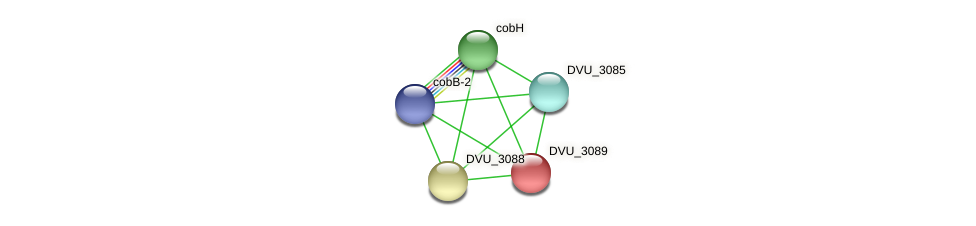 DVU_3089 protein (Desulfovibrio vulgaris Hildenborough) - STRING interaction network
