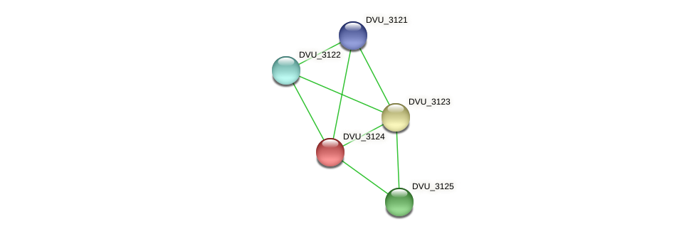 DVU_3124 protein (Desulfovibrio vulgaris Hildenborough) - STRING interaction network
