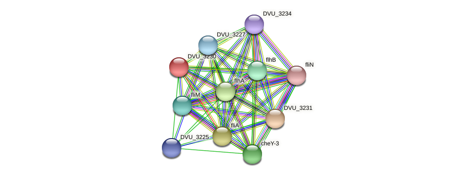 DVU_3230 protein (Desulfovibrio vulgaris Hildenborough) - STRING interaction network