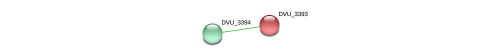 DVU_3393 protein (Desulfovibrio vulgaris Hildenborough) - STRING interaction network