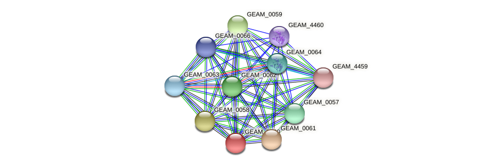 GEAM_0060 protein (Ewingella americana) - STRING interaction network