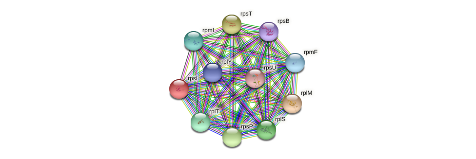 rpsI protein (Ewingella americana) - STRING interaction network