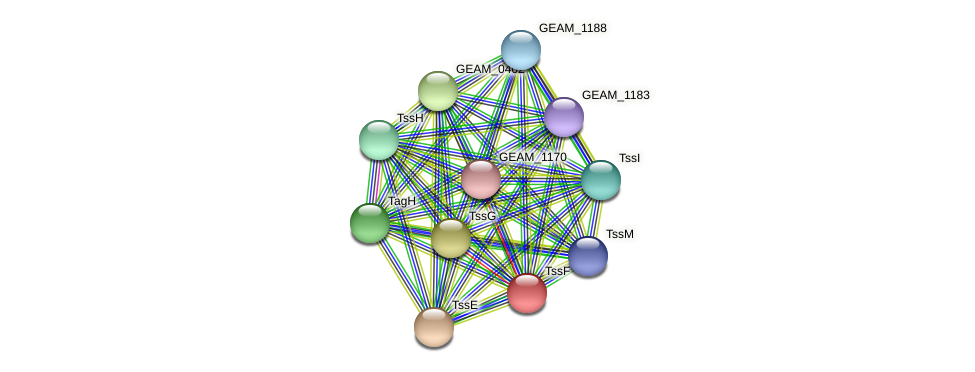 GEAM_0404 protein (Ewingella americana) - STRING interaction network