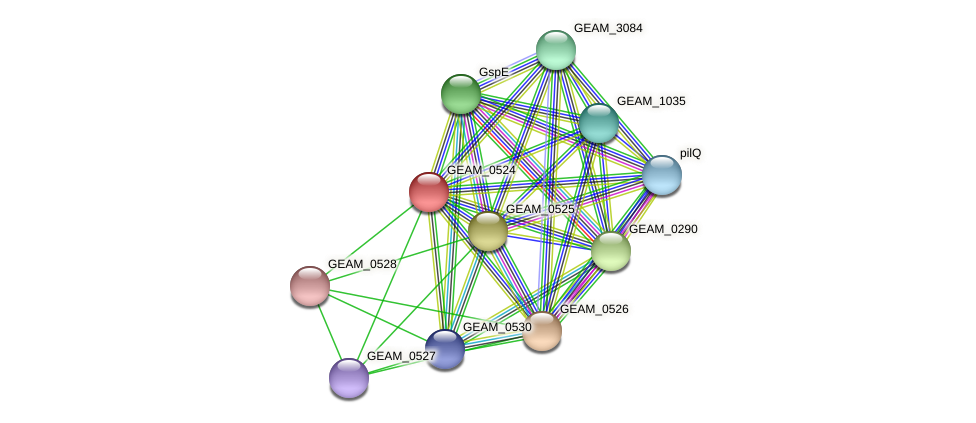 GEAM_0524 protein (Ewingella americana) - STRING interaction network