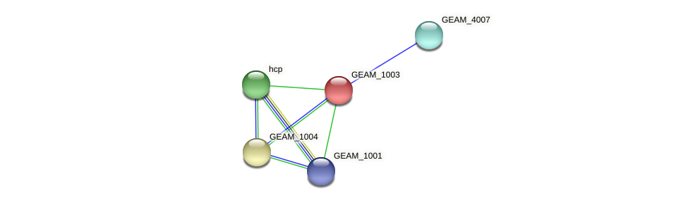 GEAM_1003 protein (Ewingella americana) - STRING interaction network