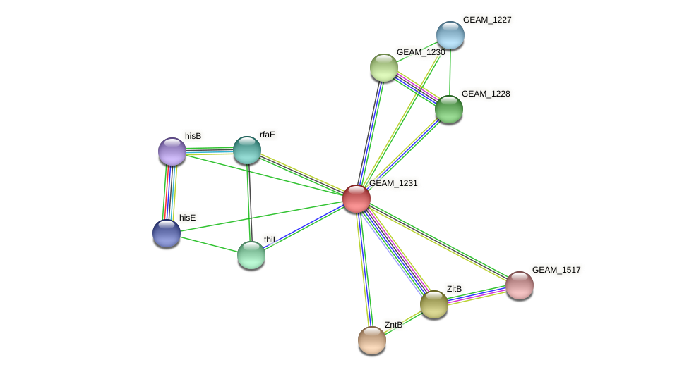 GEAM_1231 protein (Ewingella americana) - STRING interaction network