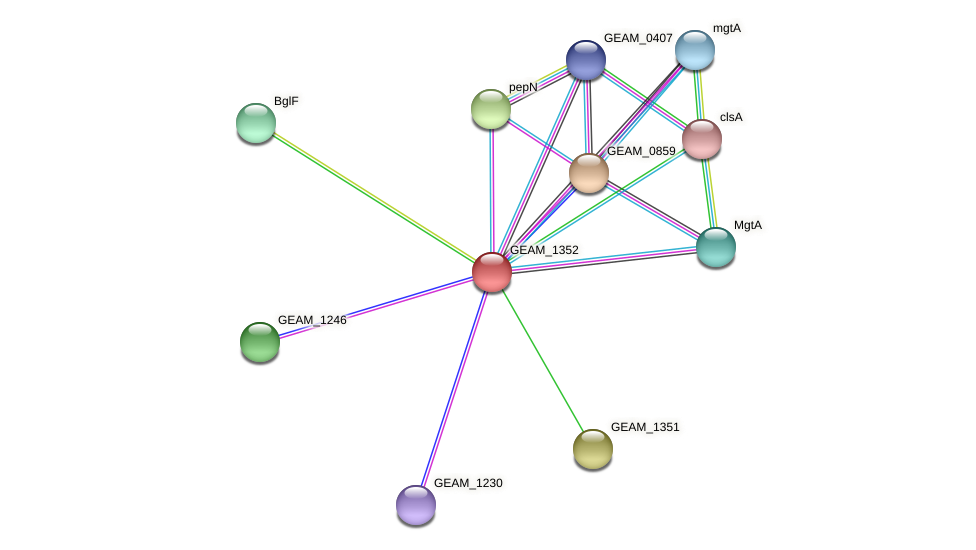 GEAM_1352 protein (Ewingella americana) - STRING interaction network