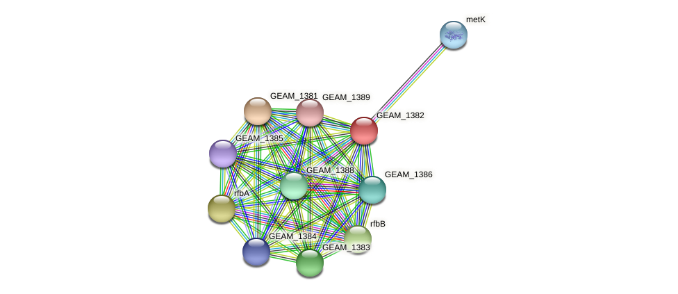 GEAM_1382 protein (Ewingella americana) - STRING interaction network