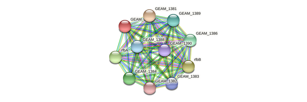 GEAM_1385 protein (Ewingella americana) - STRING interaction network