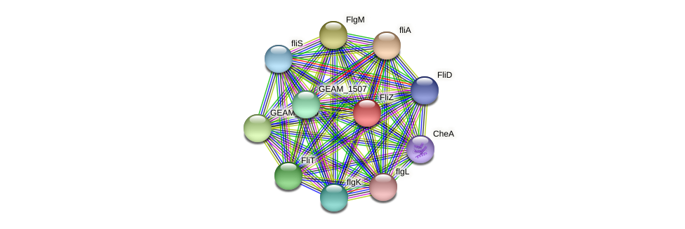 GEAM_1510 protein (Ewingella americana) - STRING interaction network