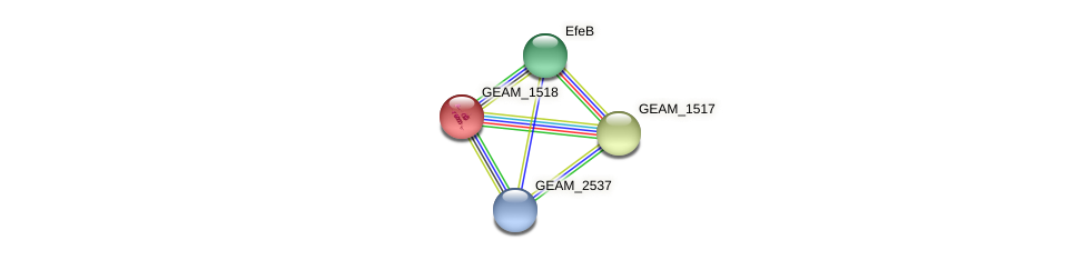 GEAM_1518 protein (Ewingella americana) - STRING interaction network