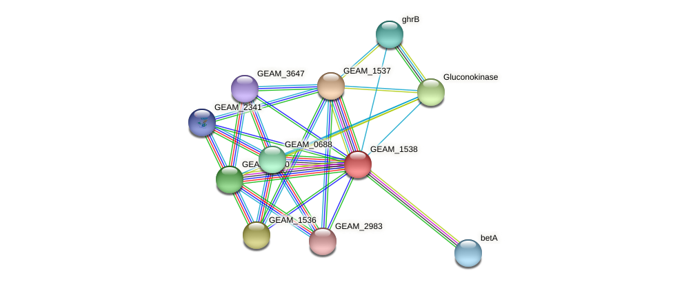 GEAM_1538 protein (Ewingella americana) - STRING interaction network