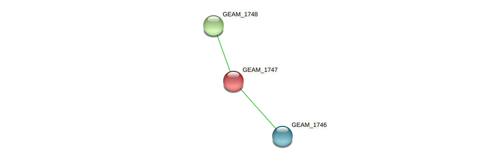 GEAM_1747 protein (Ewingella americana) - STRING interaction network