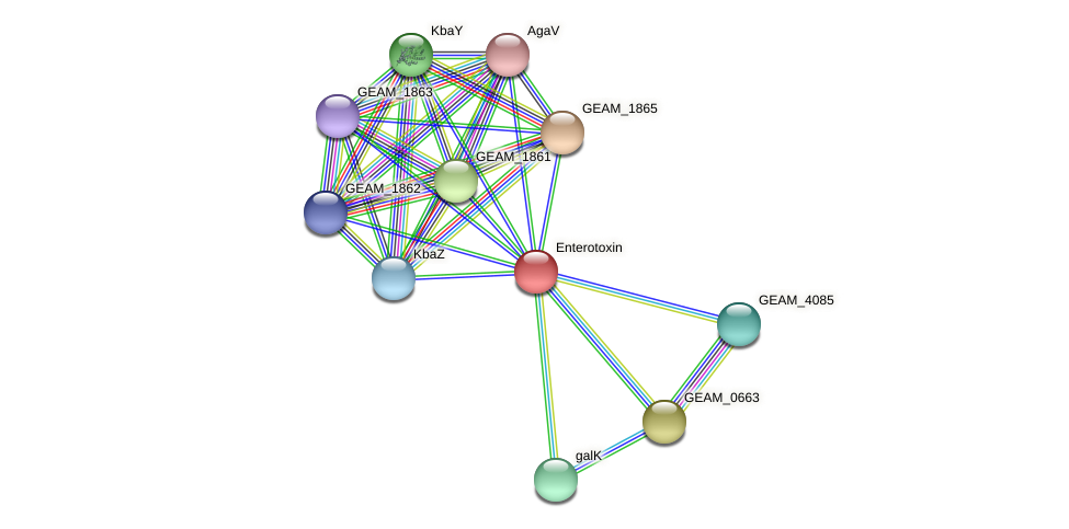 GEAM_1867 protein (Ewingella americana) - STRING interaction network