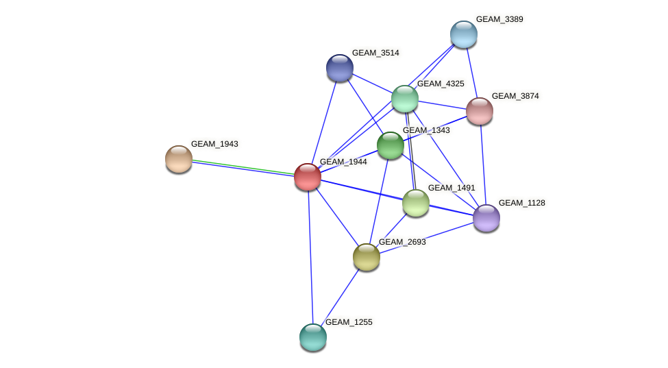 GEAM_1944 protein (Ewingella americana) - STRING interaction network