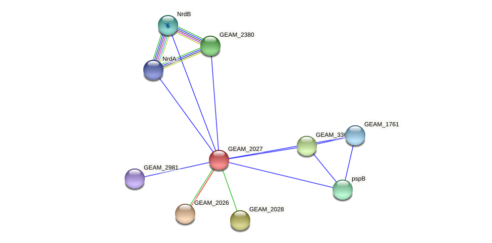GEAM_2027 protein (Ewingella americana) - STRING interaction network