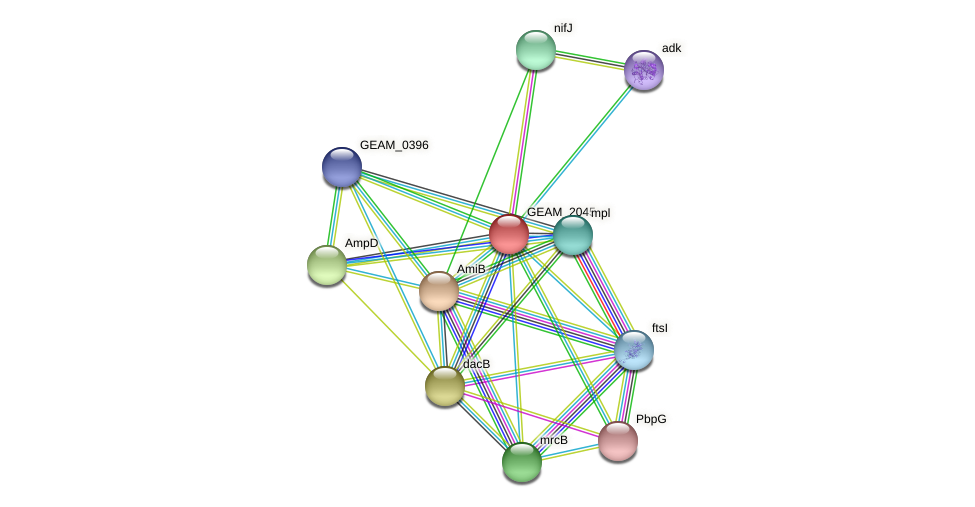GEAM_2045 protein (Ewingella americana) - STRING interaction network