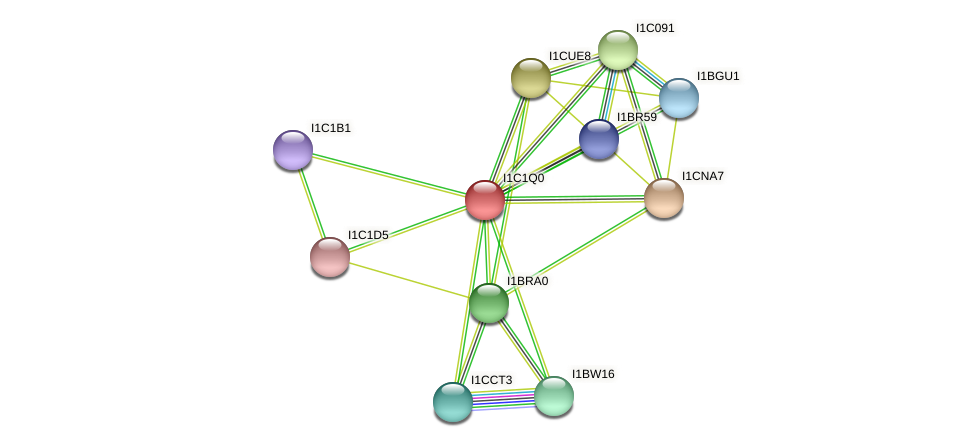 RO3G_07085 protein (Rhizopus delemar) - STRING interaction network