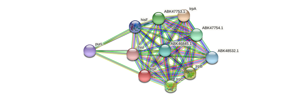Shewana3_1517 protein (Shewanella sp. ANA3) - STRING interaction network