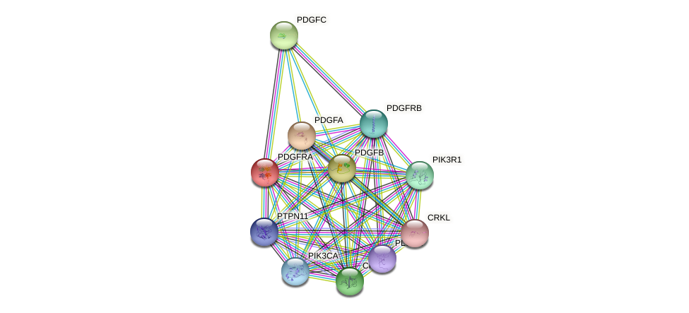 PDGFRA protein (human) - STRING interaction network