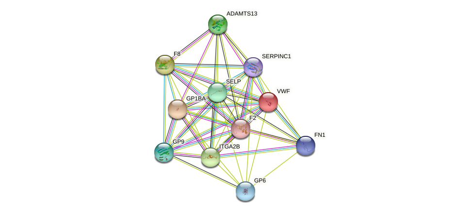 VWF protein (human) - STRING interaction network