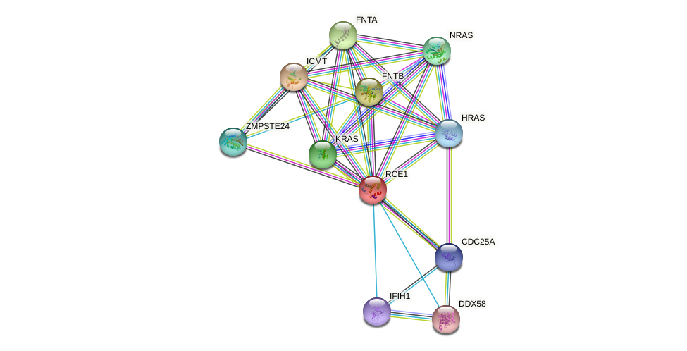 RCE1 protein (human) - STRING interaction network