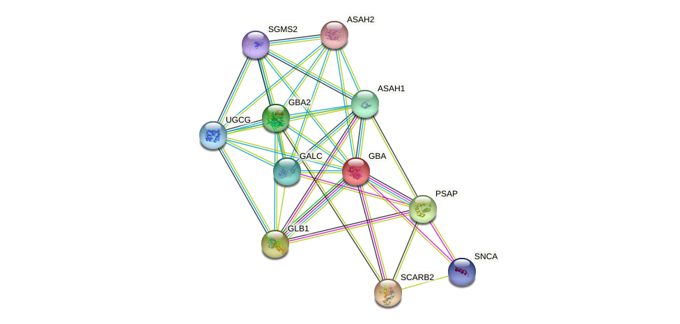 GBA protein (human) - STRING interaction network