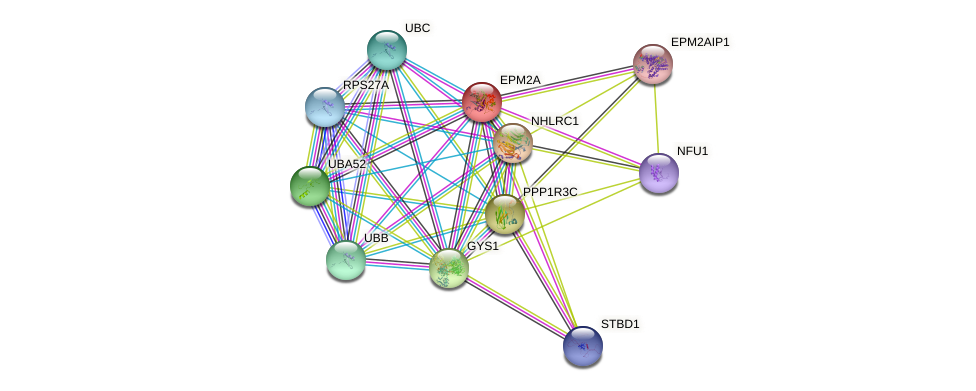 EPM2A protein (human) - STRING interaction network