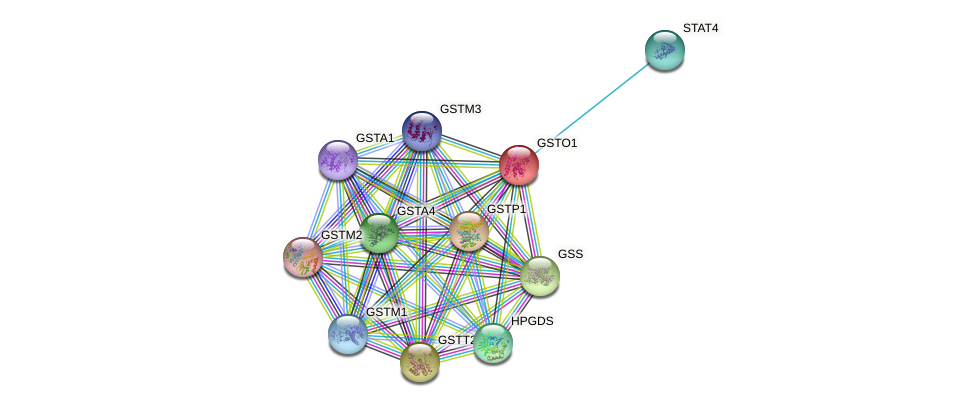 GSTO1 protein (human) - STRING interaction network