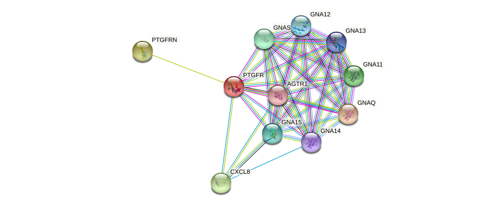 PTGFR protein (human) - STRING interaction network