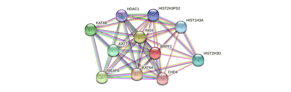 BRPF1 protein (human) - STRING interaction network