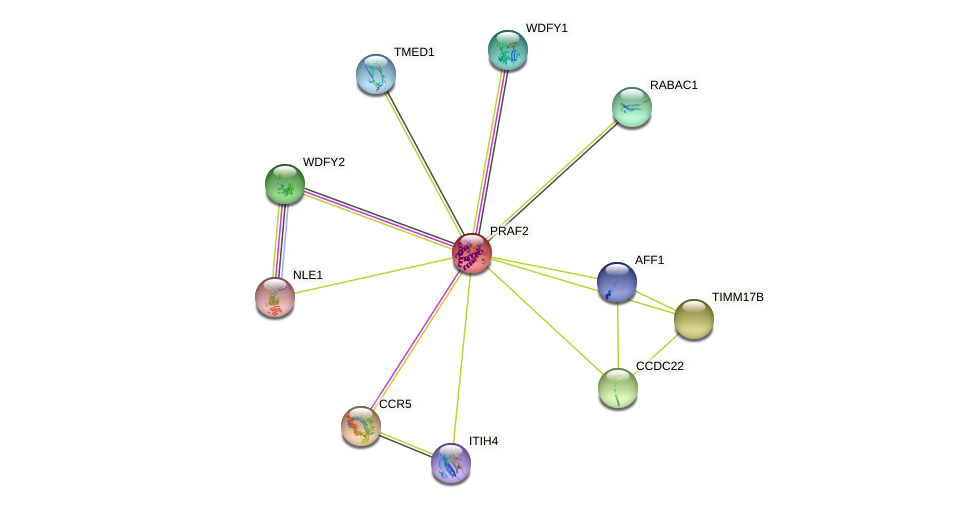PRAF2 protein (human) - STRING interaction network